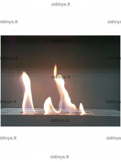 Kuras biožidiniams, bioetanolis Biosol 1ltr 2